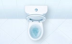 resolvendo vaso sanitário entupido